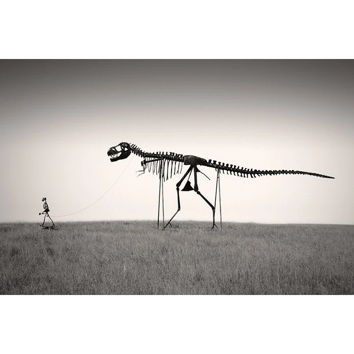 Man's Best Friend - Dinosaur Skeleton Photo - 12 x 18 Fine Art Archival Photograph
