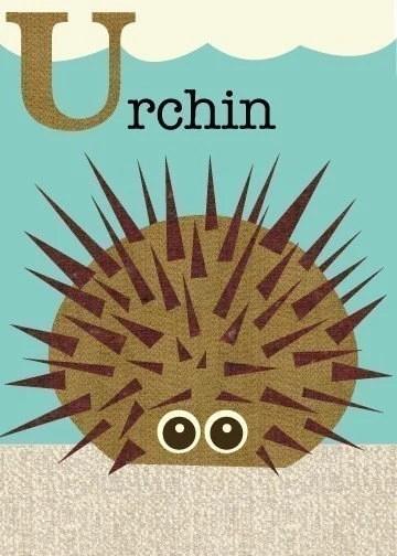 Letter U (urchin)