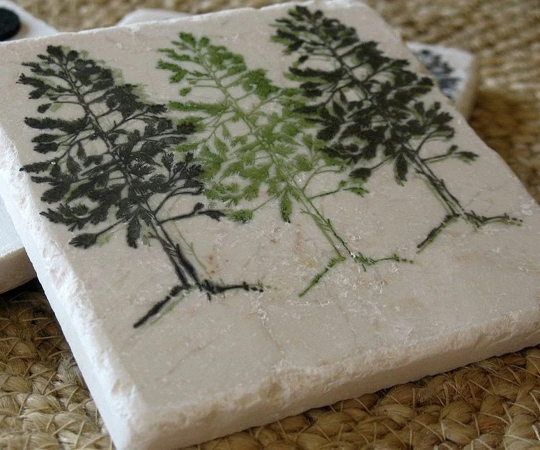 Pine Tree Absorbent Tile Coasters, Set of 4, Ready to Ship