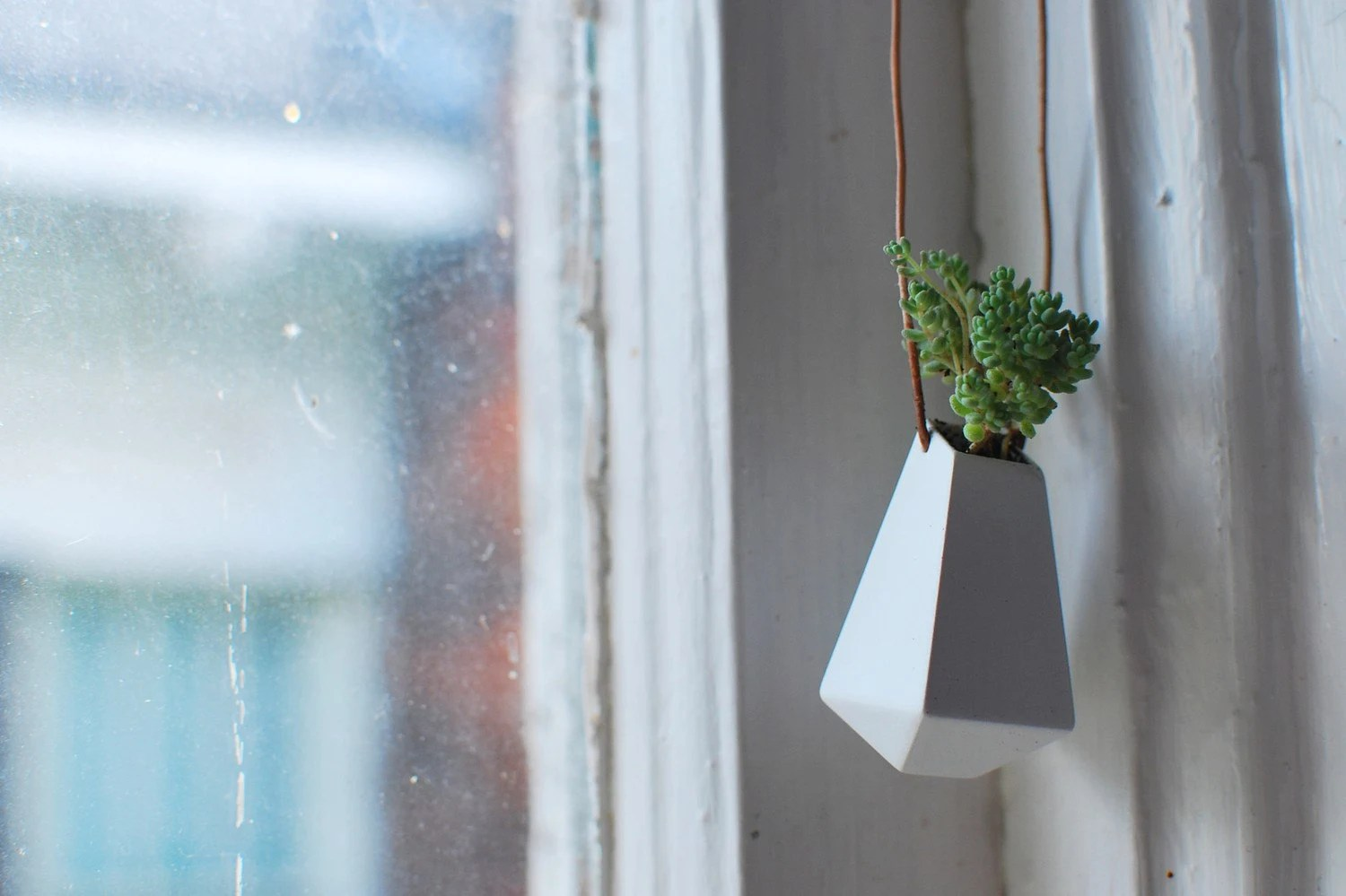A Wearable Planter, No. 3