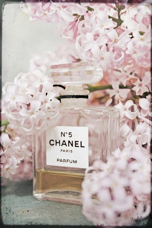 Chanel (8 by 10 Fine Art Photograph)