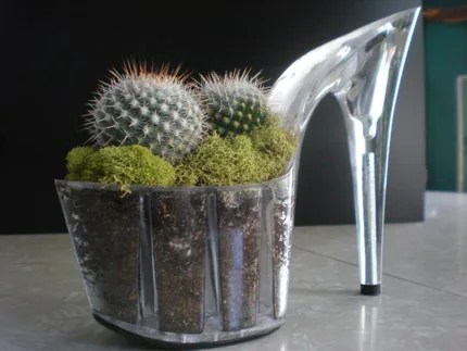 stiletto cacti planter made from a platform heel