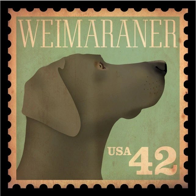 Weimaraner vintage style stamp artwork giclee archival print 12 x 12 by gemini studio limited edition No. 1