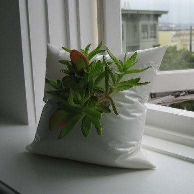 White Resin Pillow Planter with Succulent Included