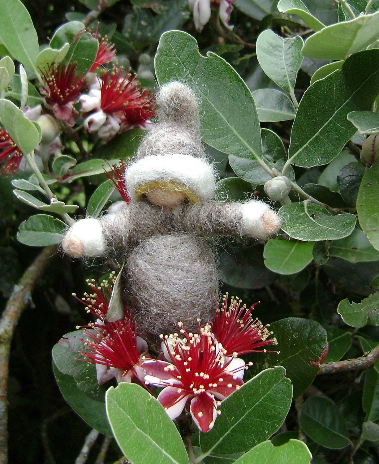 A Softearth Feijoa flower child   THIS IS RESERVED FOR  thepuddlepeople
