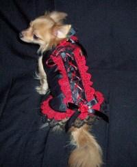 Doggie Corset