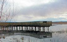 bda-viewing-deck