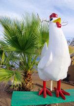 wisdoms-chicken1