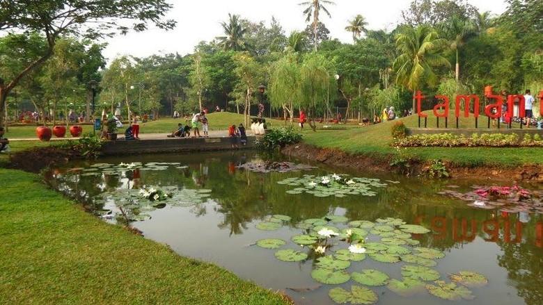 Salah satu taman di Jagakarsa, Taman Tabebuya. Gambar dari sini.