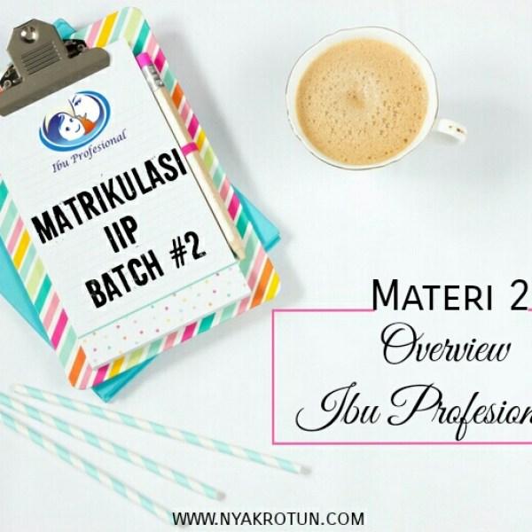 [Matrikulasi IIP] Materi #2: Overview Ibu Profesional