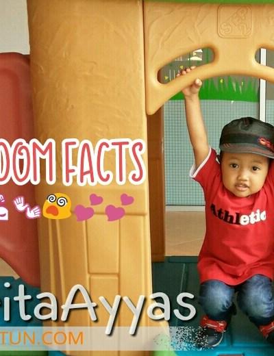 Random Facts About Ayyas