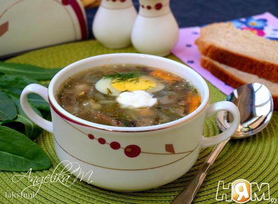 Суп со щавелем, капустой и шампиньонами - Рецепт с ...