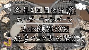 今年2回当選!カルビーキャンペーン大収穫祭2018!応募のコツ公開!