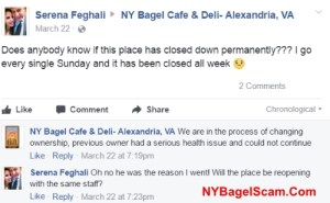 NY Bagel