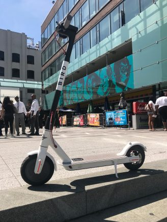 A Bird scooter.