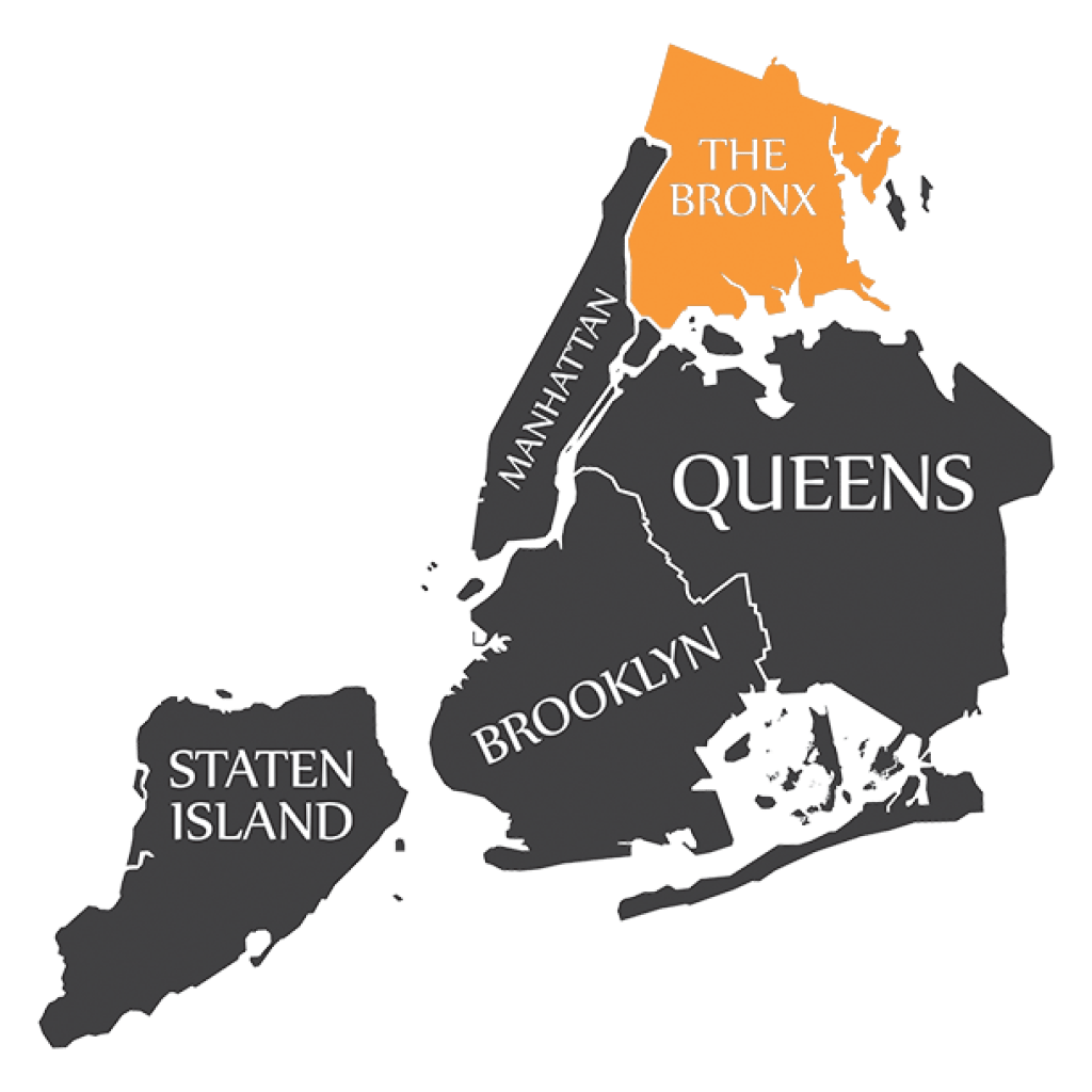 DNA Testing in The Bronx