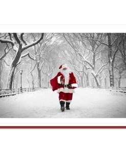 Santa on Poet Walk in Central Park - Handmade Photo Card