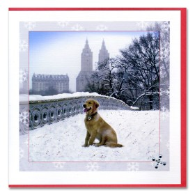 Dog Bow Bridge Central Park Handmade Card HHC9944 from NY Christmas Gifts