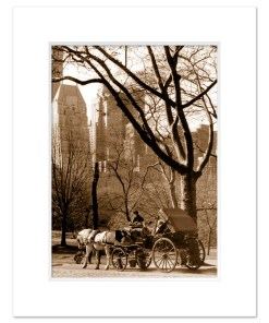 Carriage Ride Central Park Art Print MP-1005 Mat White