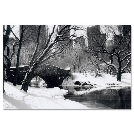 Love Bridge Central Park New York Black White Art Print NY MP-1006