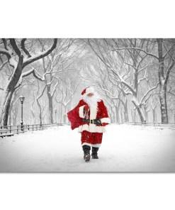 Santa on Poet Walk in Central Park Art Print MP1173
