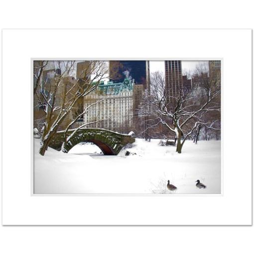 Love Bridge Central Park NY Art Print Poster Biege Gold Room Decor Print White Mat