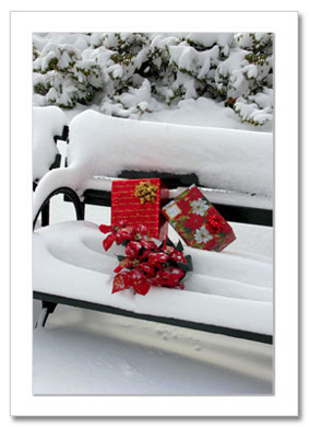 Gifts on Bench Central Park NY Christmas Card HPC2872