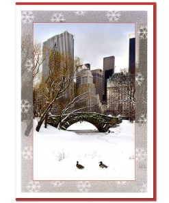 Love Bridge Snow Central Park NY Christmas Cards CGC8802
