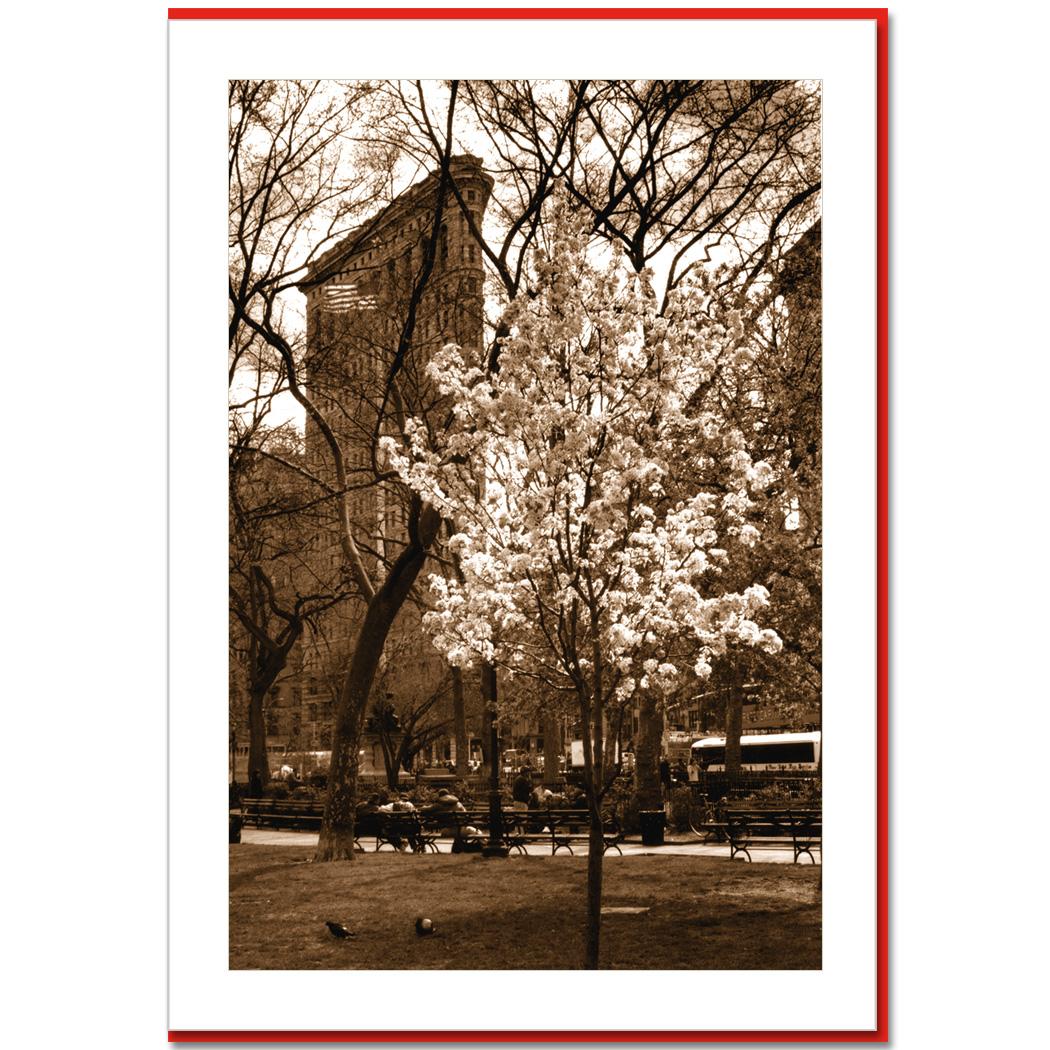 Spring At Flatiron Building New York City