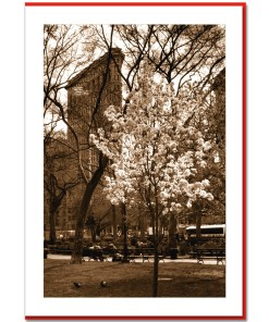 Spring at Flatiron Building Handmade Photo Card HPC2314