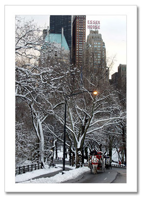 Winter Carriage Ride Central Park NY Christmas Card HPC2805