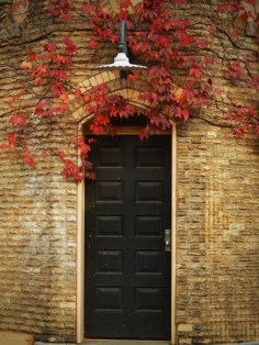 Door with Red Grape leafs