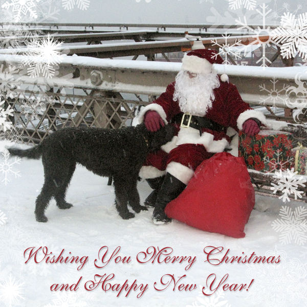 Santa on Brooklyn Bridge with Dog