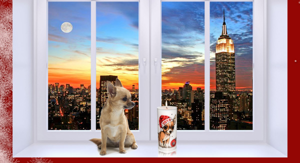 New Year 2018 Year of the Dog - Chihuahua Candle from NY Christmas Gifts