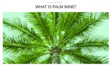 http://thebacklabel.com/recipe/what-is-palm-wine/#.WKe0mhIrLR0