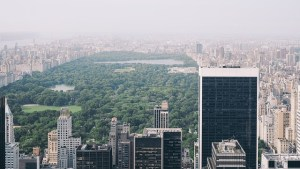 A view of Central Park from the adjacent skyscrapers.