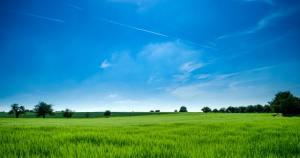 Farmlands and sky.