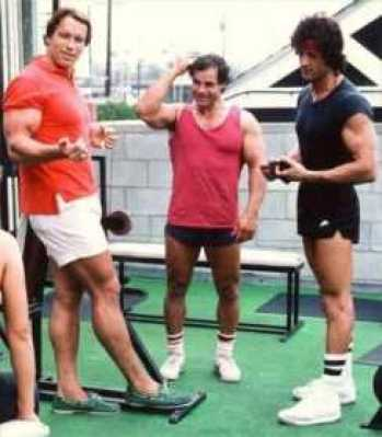 stallone and arnold