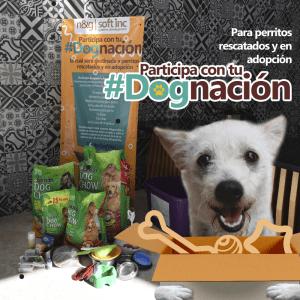 #dognacion semana 2