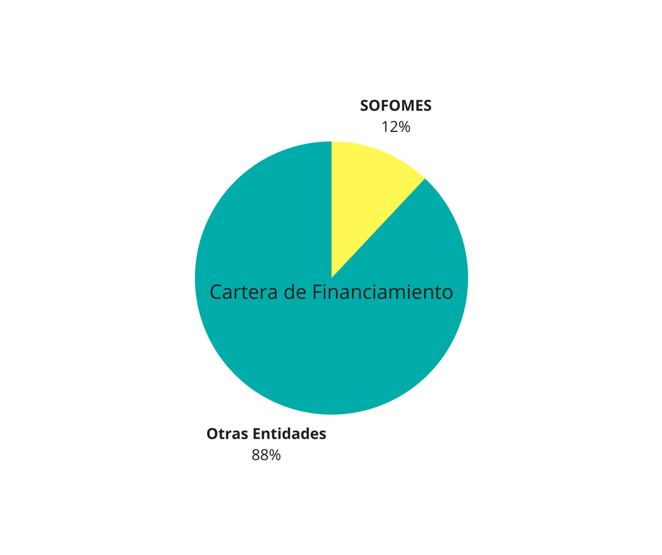 cartera de financiamiento SOFOMes