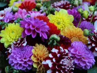 bouquet amsterdam