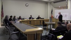 Howard Goldman testifies before the Board of Standards and Appeals. Image credit: BSA