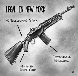 Assault Rifles and The Impact of New York State's SAFE Act
