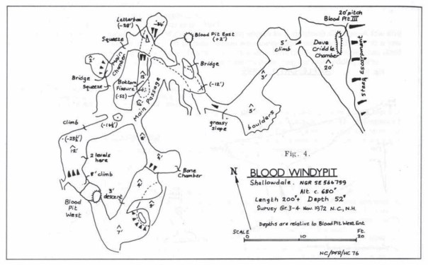 BCRAT3-blood2