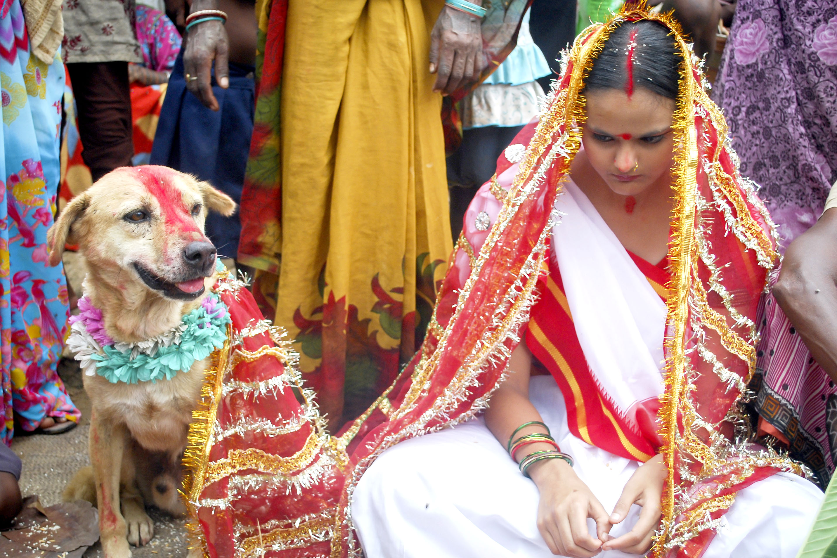 A tail of love! Indian teen marries stray dog