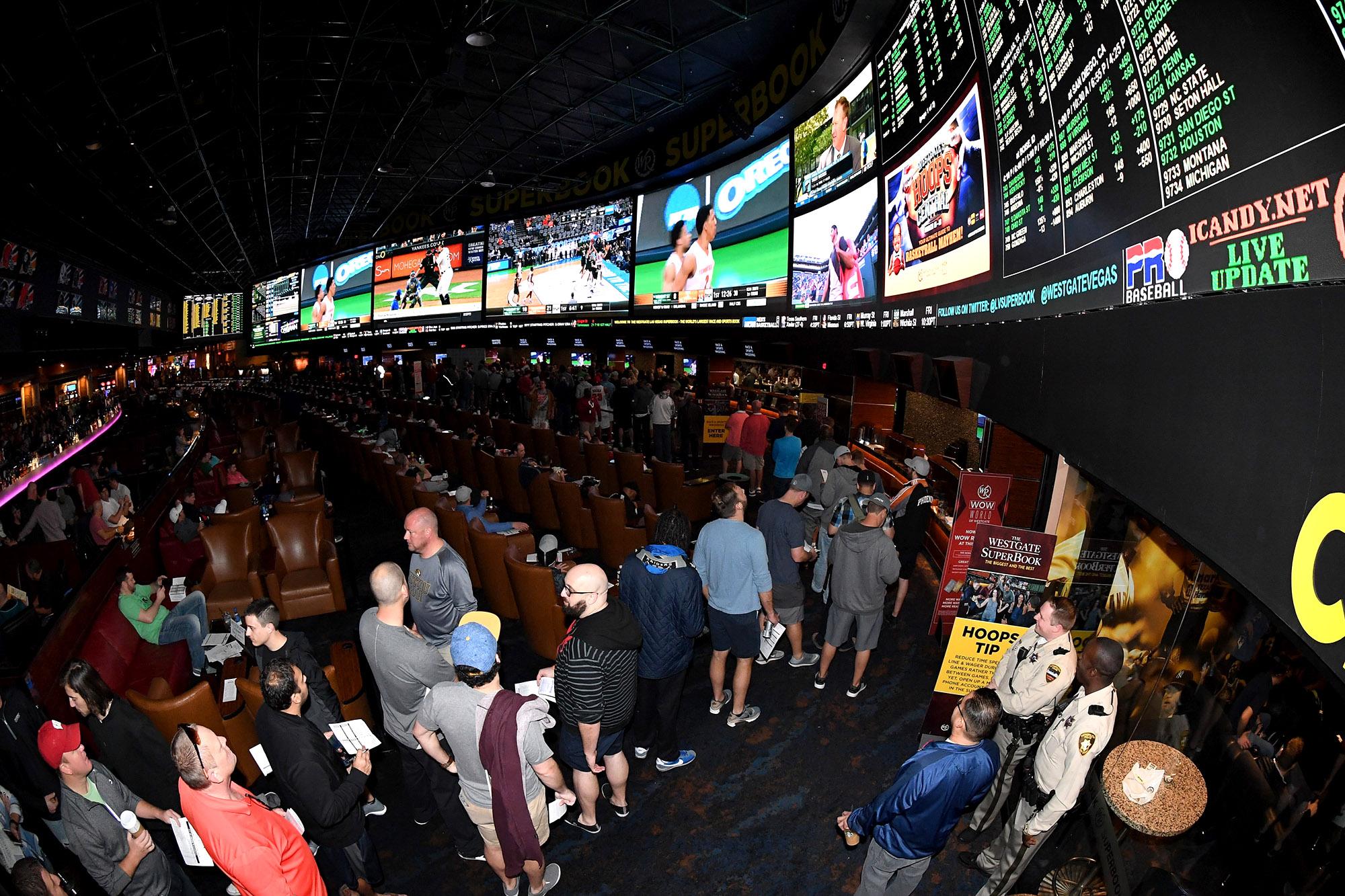 Las vegas nightmare sports betting nrl round 5 betting odds