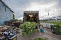 Kangaroos, zebras, weed found by Canadian police during drug raid