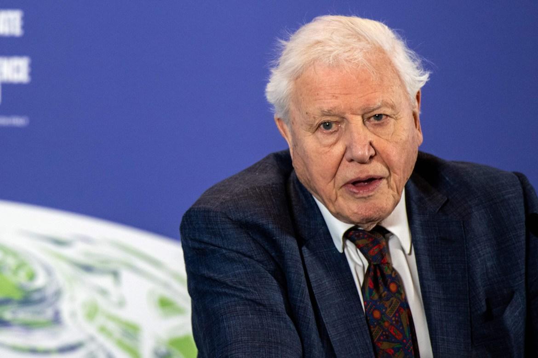 Sir David Attenborough, 94, gets COVID-19 vaccine 1