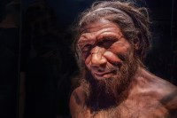 Neanderthals and humans had cave sex — but did they kiss?