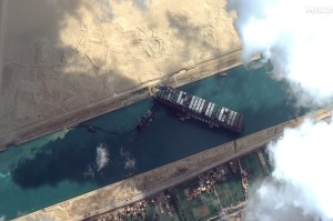 Animals trapped in 20 livestock vessels caught in the Suez Canal congestion